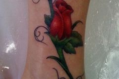 Rose-Tattoo-on-Leg